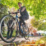 A student rides a bike down Main Mall. Credit: Martin Dee/UBC Communications and Marketing